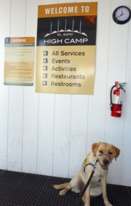 082815 high camp