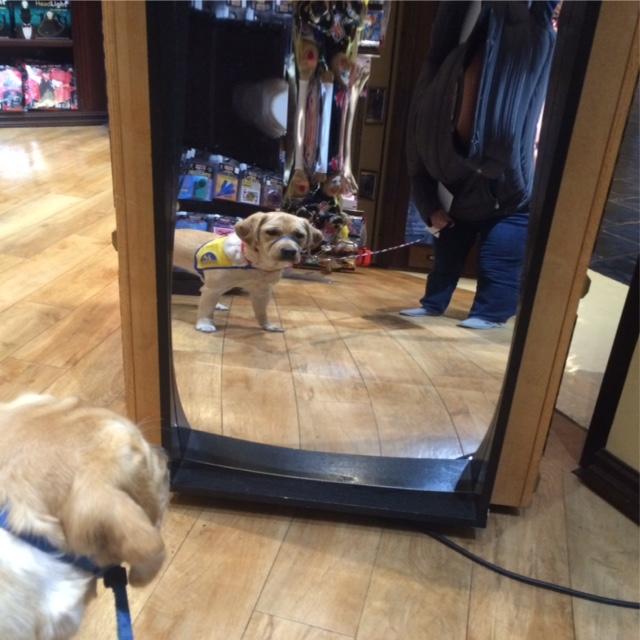 120215 mirror