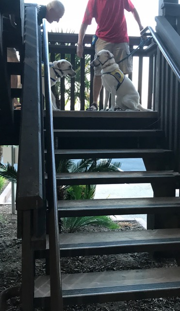 062717 Stairs9