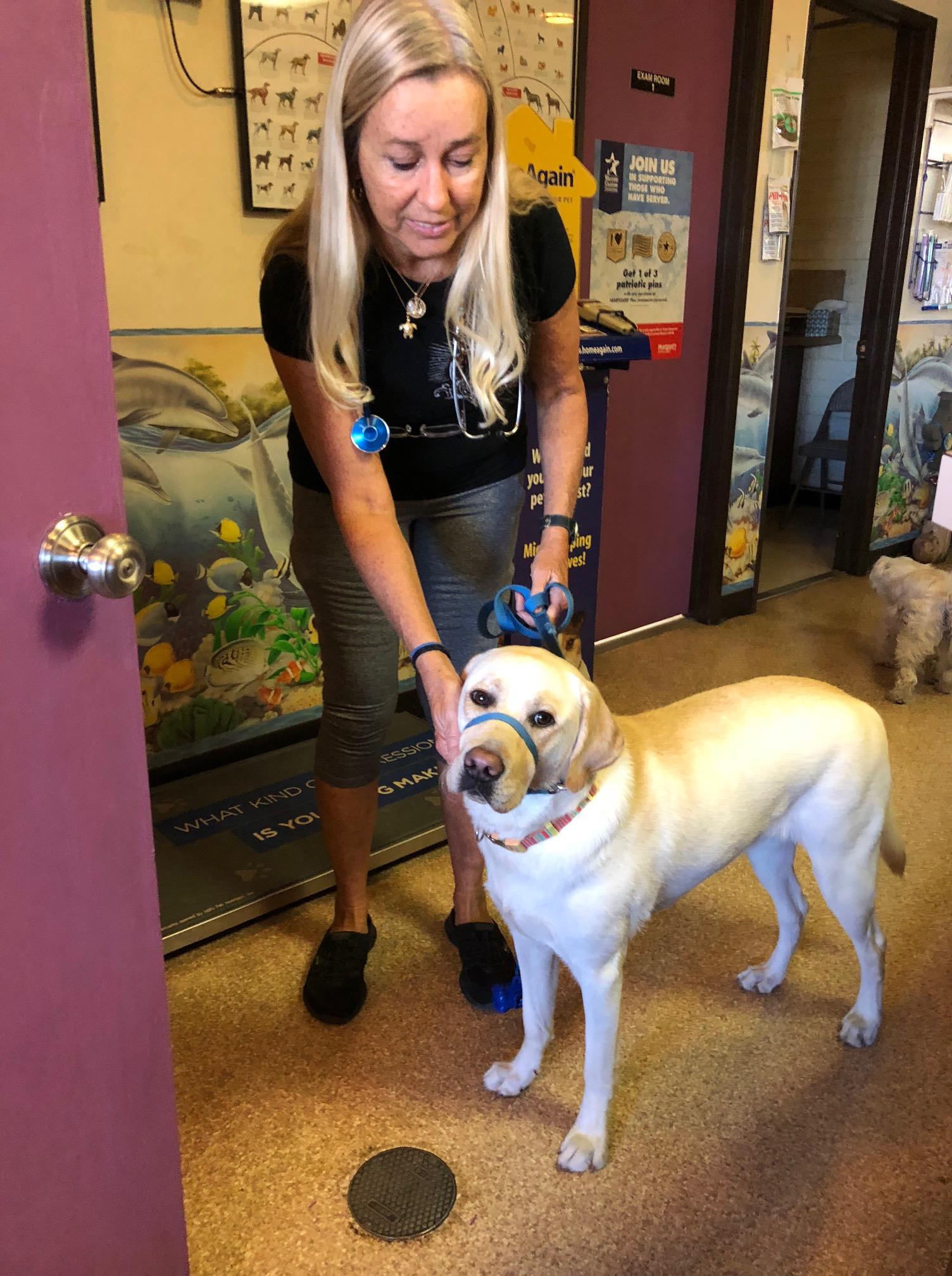 100417 last vet visit