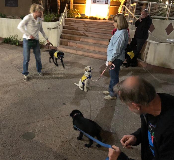011618 first puppy class
